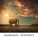 elephant with trunks and big... | Shutterstock . vector #515132611