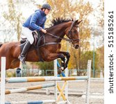 Small photo of Young horseman on show jumping competition. Rider with sorrel horse jump over the hurdle