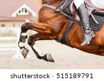 Close Up Image Of Jumping Hors...