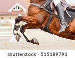 Close Up Image Of Jumping Hors...