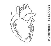 heart icon in outline style...   Shutterstock .eps vector #515277391