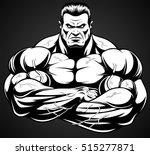 vector illustration  strict... | Shutterstock .eps vector #515277871