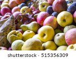 autumn fruit. pears  apple and... | Shutterstock . vector #515356309