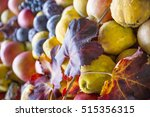 autumn fruit. pears  apple and... | Shutterstock . vector #515356315
