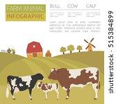 cattle farming infographic... | Shutterstock .eps vector #515384899