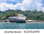 tioman island wild nature.... | Shutterstock . vector #515452495