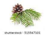 fir tree branch and cones... | Shutterstock . vector #515567101