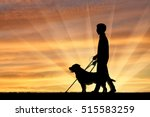 blind disabled with cane and... | Shutterstock . vector #515583259