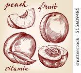 fruit peach set hand drawn... | Shutterstock .eps vector #515609485