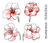 pink tropical flowers blossom... | Shutterstock . vector #515615611
