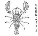 zodiac signs  cancer. | Shutterstock .eps vector #515702311