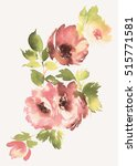 flowers watercolor illustration.... | Shutterstock . vector #515771581
