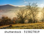 hillside with naked trees in morning fog. Mountain peak can be seen in the distance under clear morning sky - stock photo