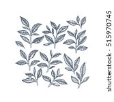 tea leaf collection. engraved... | Shutterstock .eps vector #515970745