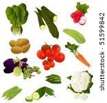 indian food pack  vegetables | Shutterstock .eps vector #51599842