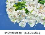 flowers  reflection in pure... | Shutterstock . vector #516036511