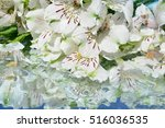 flowers  reflection in pure... | Shutterstock . vector #516036535
