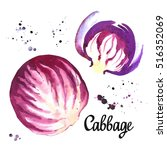 watercolor purple cabbage.... | Shutterstock . vector #516352069