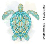 patterned turtle on the grunge...