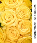 Bouquet Of Fresh Yellow Roses ...