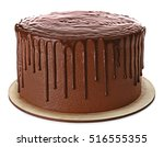 Tasty Chocolate Cake Isolated...
