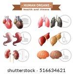 human organs health risk... | Shutterstock .eps vector #516634621