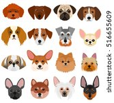 Stock vector small dog faces set on white background 516655609