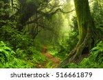 baglung  nepal. august 27 2010... | Shutterstock . vector #516661879