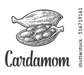 cardamom spice fruit with seed...   Shutterstock .eps vector #516719161