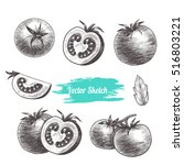 Vector Tomato Hand Drawn Sketc...