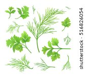 vector twigs of dill and parsley | Shutterstock .eps vector #516826054