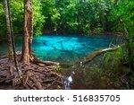 blue pool in krabi province ... | Shutterstock . vector #516835705