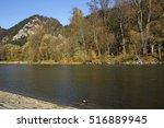 dunajec river gorge in sromowce ... | Shutterstock . vector #516889945