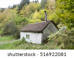 Stock photo autumn forest selva de irati fall beech jungle in navarra pyrenees of spain 516922081