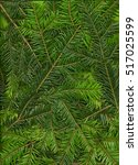 Small photo of Background from twigs of fir (Abies alba), is suitable for processing as a texture or pattern