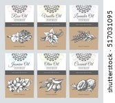 vector set of templates... | Shutterstock .eps vector #517031095