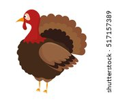 thanksgiving turkey character... | Shutterstock .eps vector #517157389