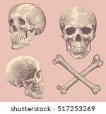 Skull And Bones. Hand Drawn...