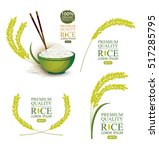 rice. vector illustration. | Shutterstock .eps vector #517285795