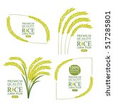 rice. vector illustration. | Shutterstock .eps vector #517285801