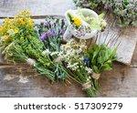 herbs medicine flowers toned... | Shutterstock . vector #517309279