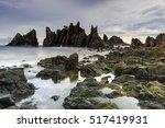 stone shark teeth locations... | Shutterstock . vector #517419931