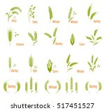cereals icon set. concept for... | Shutterstock .eps vector #517451527