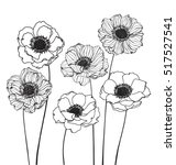 collection set of anemone... | Shutterstock .eps vector #517527541