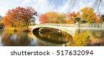 Central Park Autumn Scene  New...