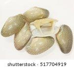Small photo of Closeup fresh raw Surf clam background,Surf clam, Short necked clam, Carpet clam, Venus shell, Baby clam, Paphia undulata, Veneridae.
