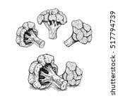 hand drawn set of broccoli.... | Shutterstock .eps vector #517794739