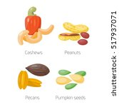 different nuts vector set. | Shutterstock .eps vector #517937071