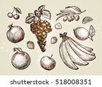 hand drawn fruits. sketch... | Shutterstock .eps vector #518008351