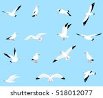 vector set of beautiful... | Shutterstock .eps vector #518012077